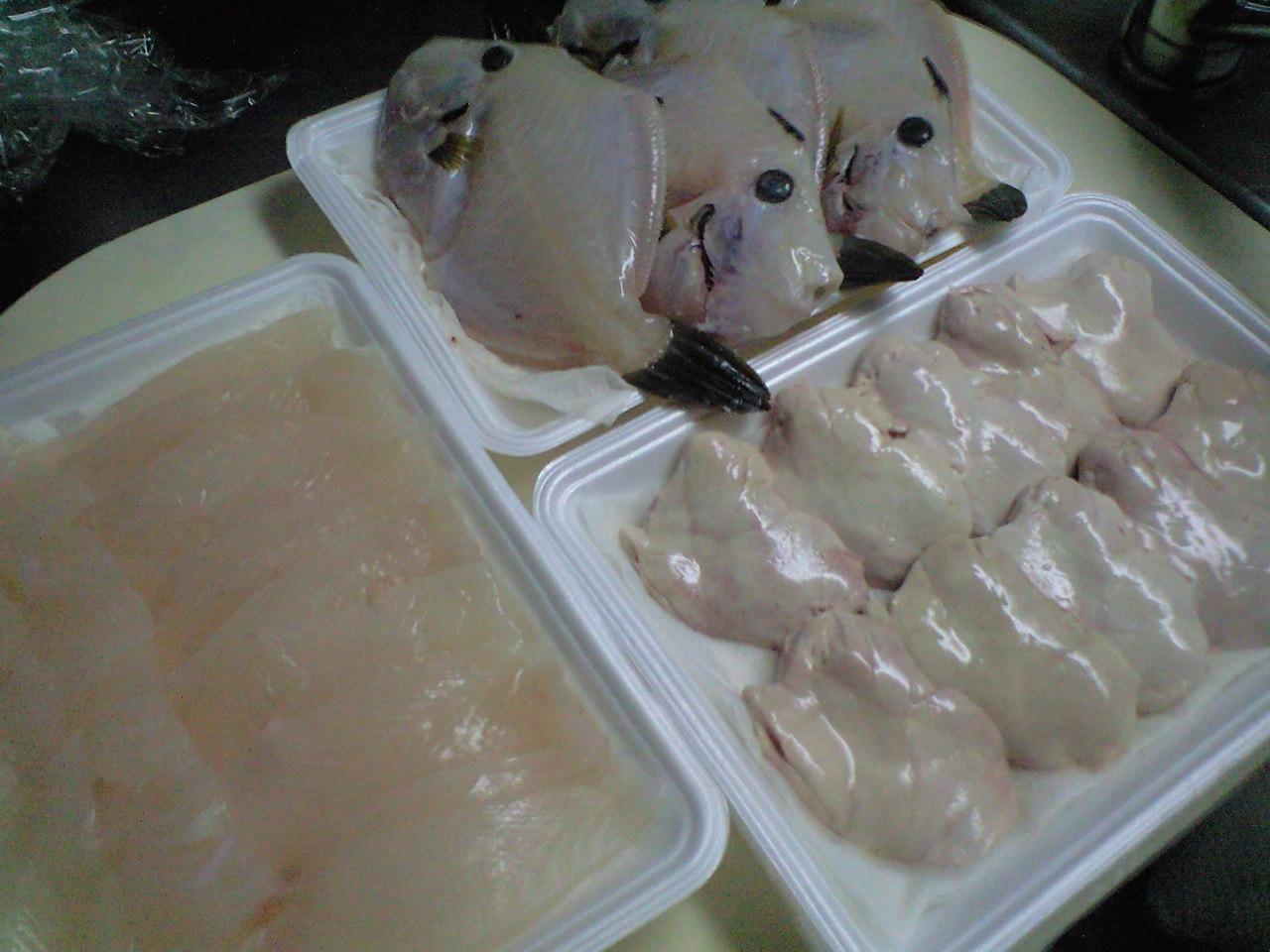 ◆HARUKI流 釣った魚の活かし方◆